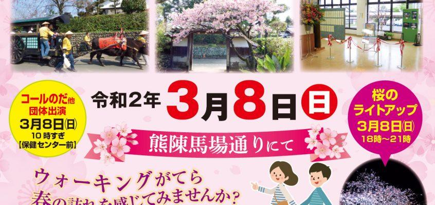 【中止】第7回 寒緋桜を見におじゃんせ