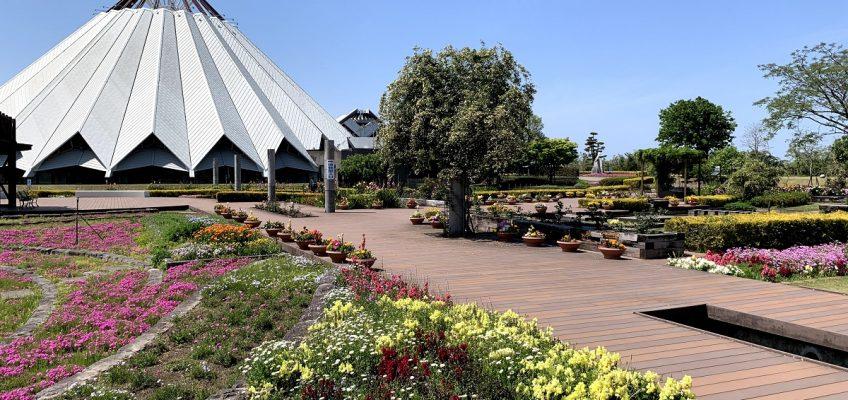 クレインパークいずみ・花公園