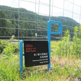 九州オルレ出水コース カンセ